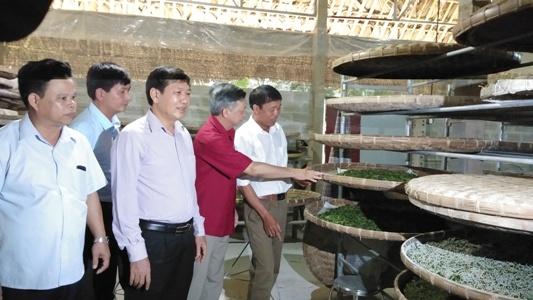 Các đại biểu thăm tổ hợp nuôi tằm của người dân