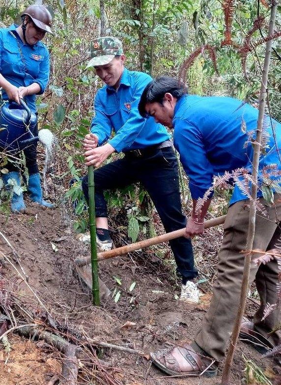 (Đoàn viên, thanh niên tham gia hưởng ứng phong trào trồng tre tại xã Dế Xu Phình, huyện Mù Cang Chải)