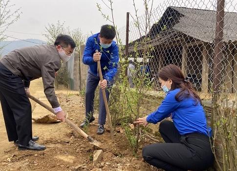 Đồng chí Đinh Tiến Hùng - Phó Bí thư Thường trực Tỉnh đoàn cùng đoàn viên, thanh niên tham gia hoạt động trồng 1.000 cây hoa đào tại Chòm dân cư Cu Vai, xã Xà Hồ, huyện Trạm Tấu